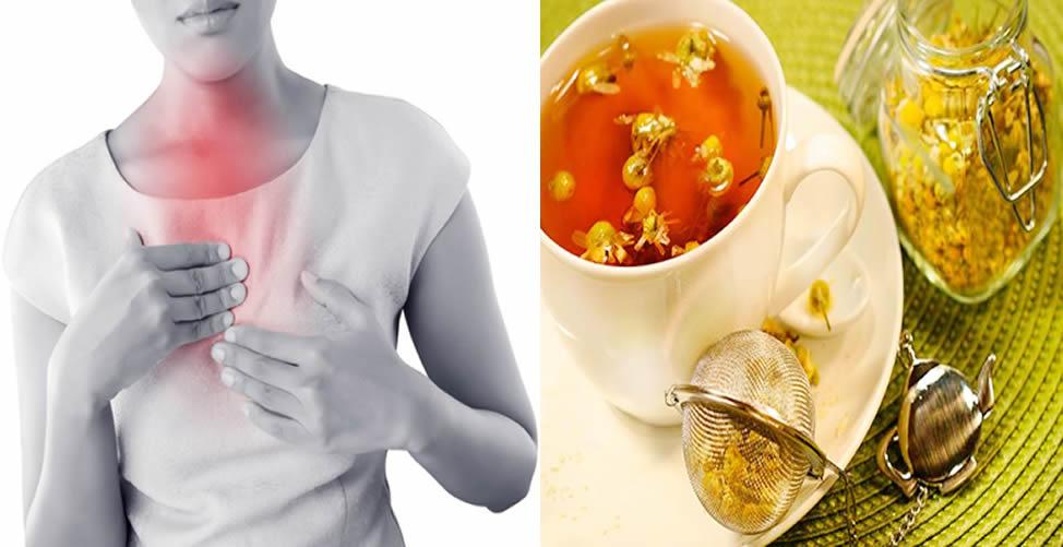 Remédio Caseiro Para Azia - Chá de Camomila